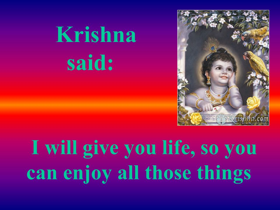 I asked Lord Krishna for the things that would make me like life