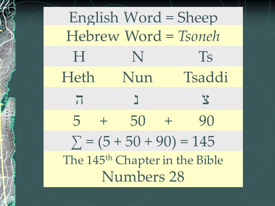 English Word = Sheep Hebrew Word = Tsoneh H N Ts Heth Nun Tsaddi ה נ צ 5 + 50 + 90 ∑ = (5 + 50 + 90) = 145 The 145 th Chapter in the Bible Numbers 28