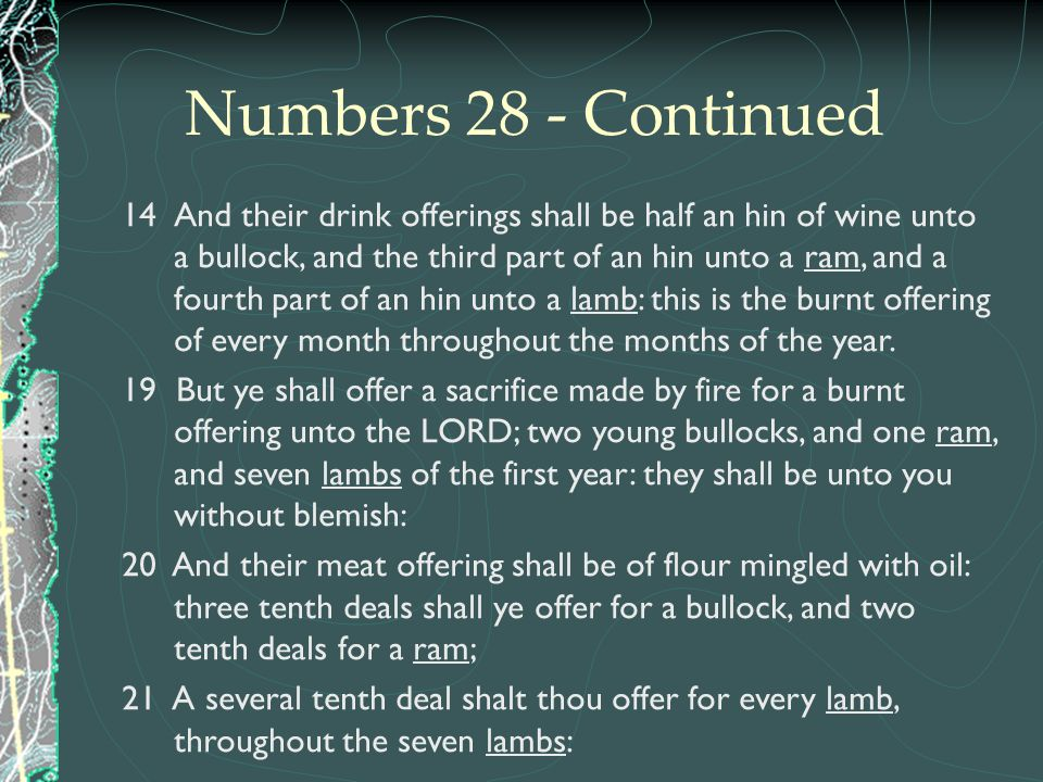 Numbers 28 - Continued 14And their drink offerings shall be half an hin of wine unto a bullock, and the third part of an hin unto a ram, and a fourth