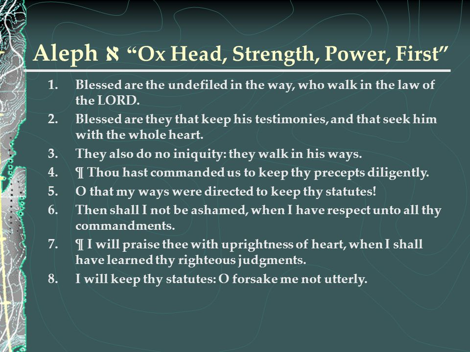 """Aleph א """" Ox Head, Strength, Power, First"""" 1.Blessed are the undefiled in the way, who walk in the law of the LORD. 2.Blessed are they that keep his t"""