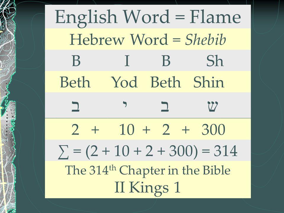 English Word = Flame Hebrew Word = Shebib B I B Sh Beth Yod Beth Shin ב י ב ש 2 + 10 + 2 + 300 ∑ = (2 + 10 + 2 + 300) = 314 The 314 th Chapter in the