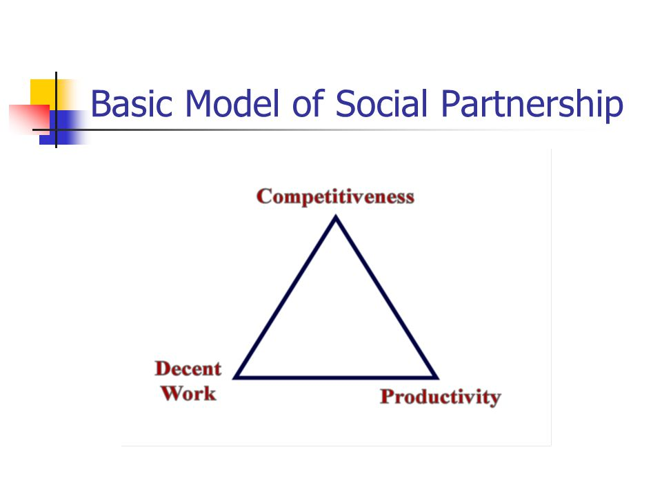 Basic Model of Social Partnership