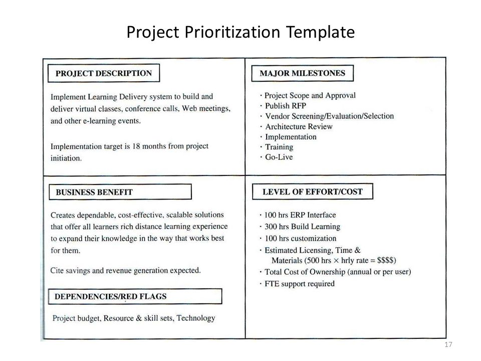 Project Prioritization Template 17
