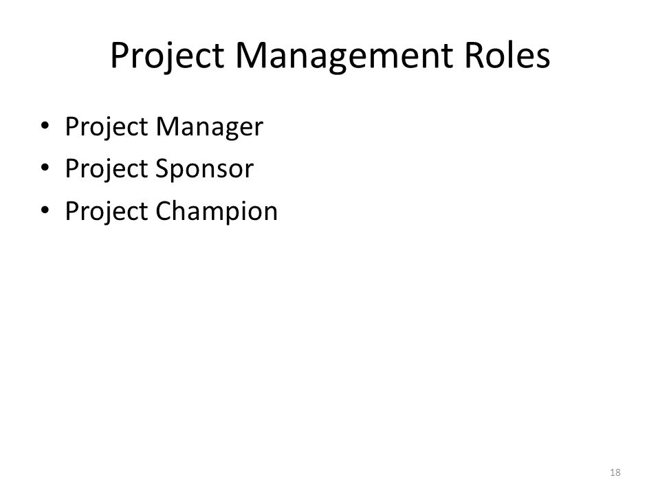 Project Management Roles Project Manager Project Sponsor Project Champion 18
