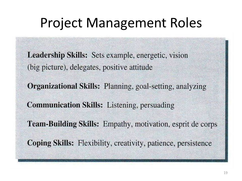 Project Management Roles 19