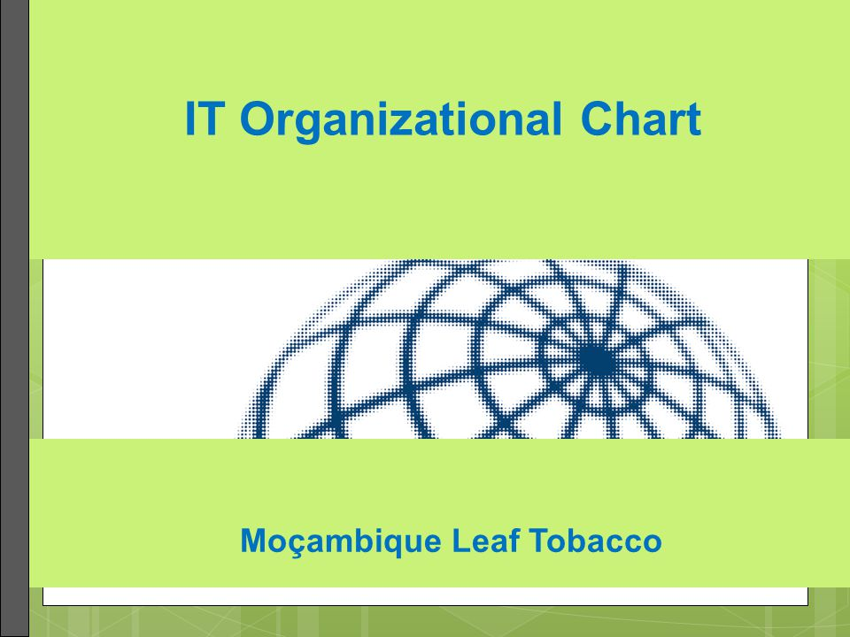 IT Organizational Chart Moçambique Leaf Tobacco