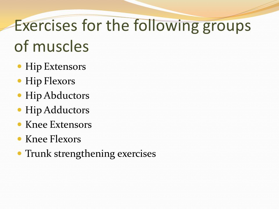 Exercises for the following groups of muscles Hip Extensors Hip Flexors Hip Abductors Hip Adductors Knee Extensors Knee Flexors Trunk strengthening ex