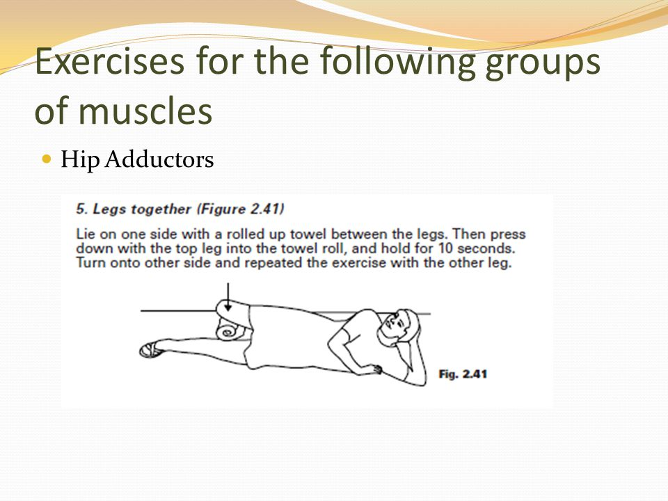 Exercises for the following groups of muscles Hip Adductors