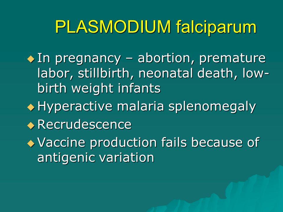 PLASMODIUM falciparum  In pregnancy – abortion, premature labor, stillbirth, neonatal death, low- birth weight infants  Hyperactive malaria splenome