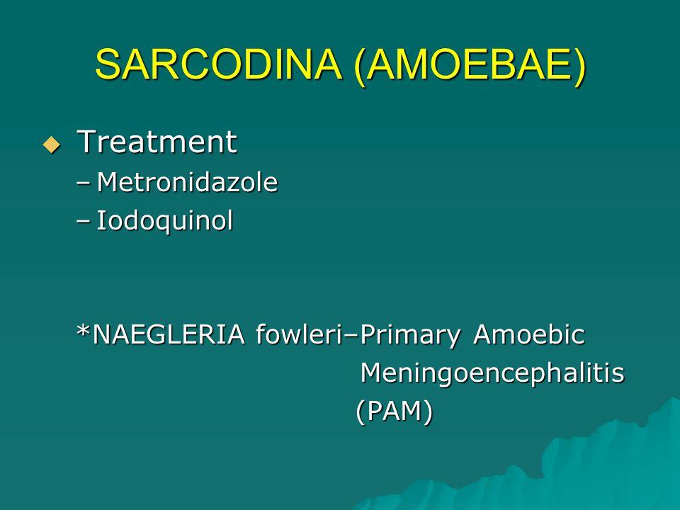 TOXOPLASMA gondii (Zoonosis)  Clinical forms –Lymphadenopathy –Ocular toxoplasmosis –Myocarditis –Meningoencephalitis –Atypical pneumonia –Congenital toxoplasmosis  Increased IgM  Cerebral calcification