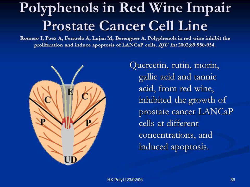 39HK PolyU 23/02/05 Polyphenols in Red Wine Impair Prostate Cancer Cell Line Romero I, Paez A, Ferruelo A, Lujan M, Berenguer A. Polyphenols in red wi
