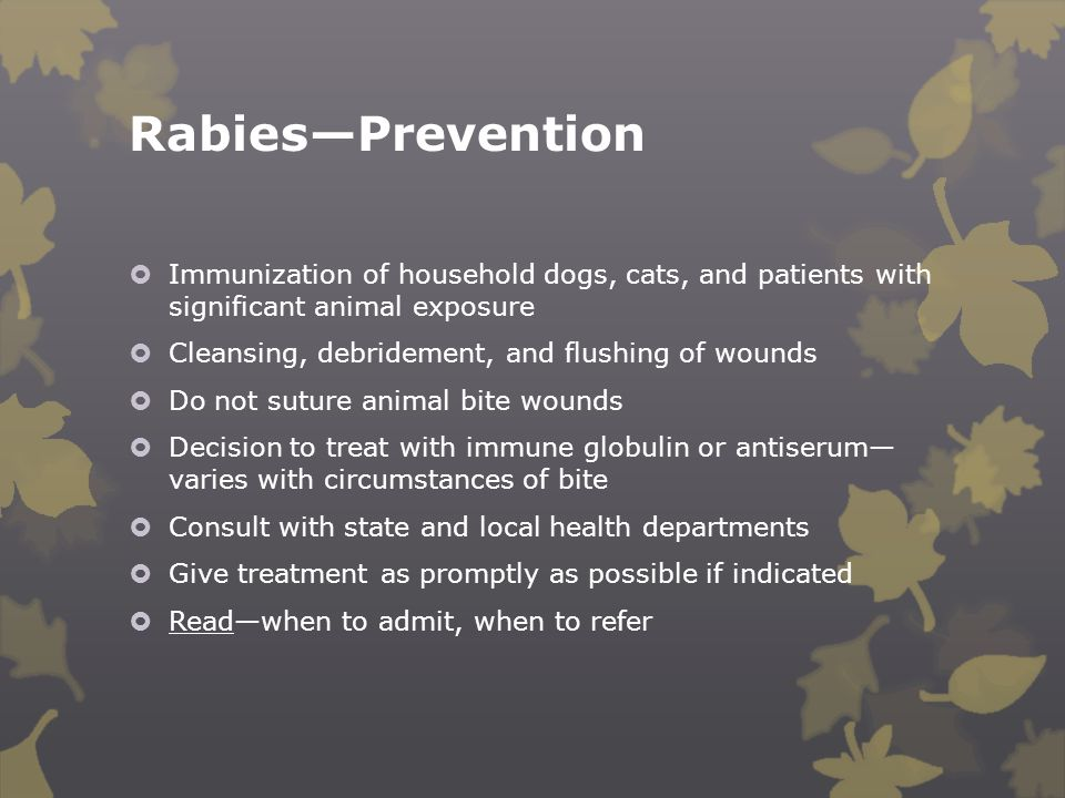Rabies—Prevention  Immunization of household dogs, cats, and patients with significant animal exposure  Cleansing, debridement, and flushing of woun
