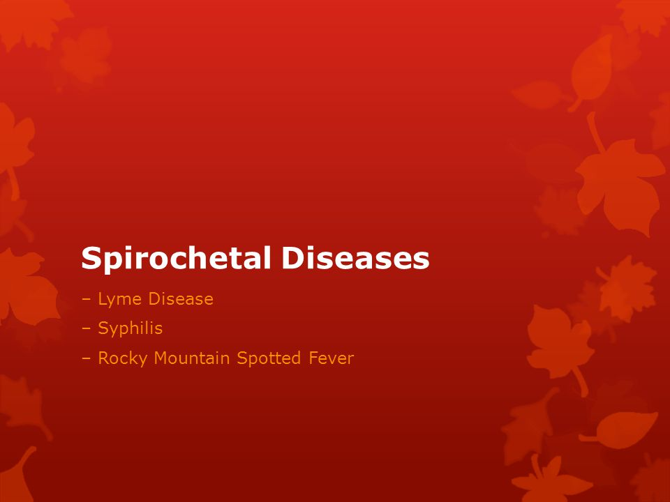 Spirochetal Diseases – Lyme Disease – Syphilis – Rocky Mountain Spotted Fever