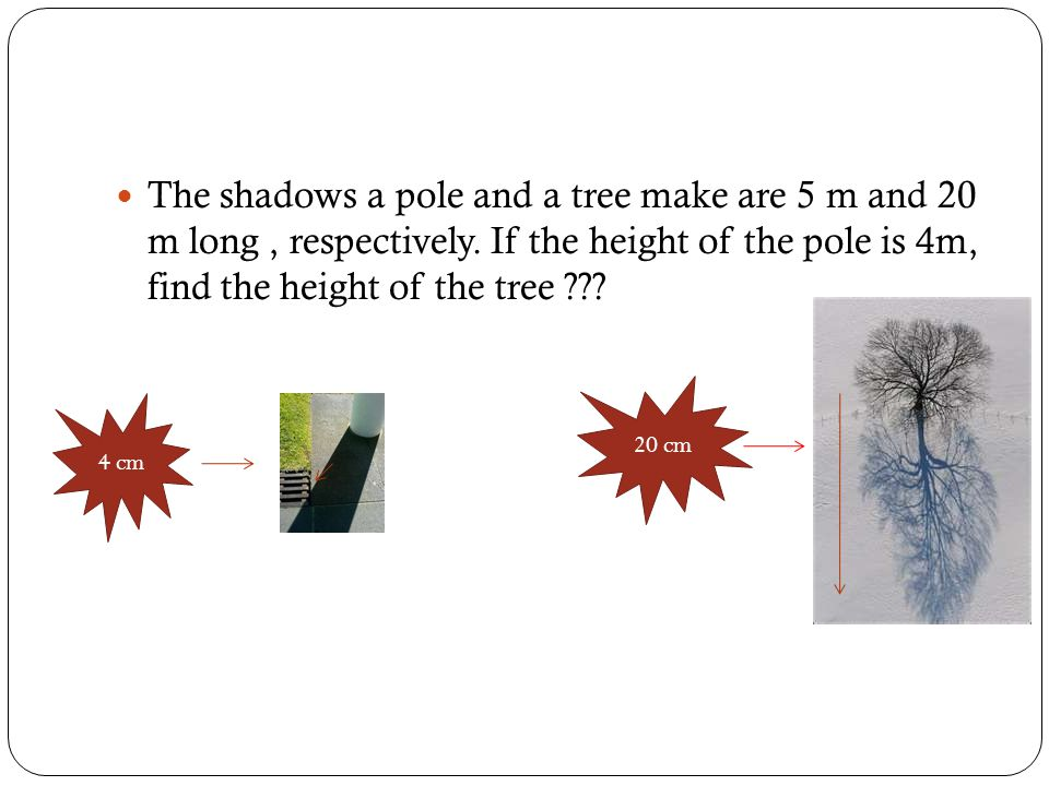 The shadows a pole and a tree make are 5 m and 20 m long, respectively. If the height of the pole is 4m, find the height of the tree ??? 20 cm 4 cm