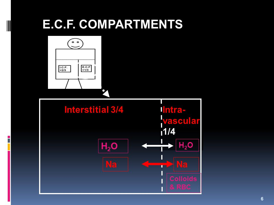 Intra- vascular 1/4 E.C.F. COMPARTMENTS Interstitial 3/4 H2OH2O H2OH2O Na Colloids & RBC 6