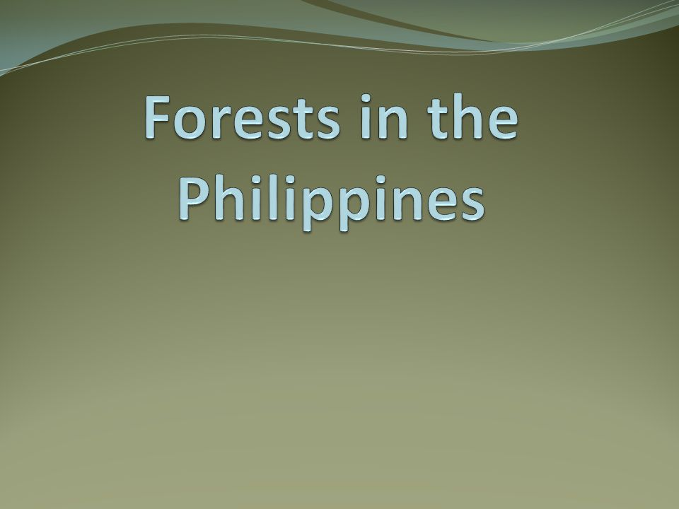 Philippine Forest The Philippines is one of the most biologically diverse nations in the world.