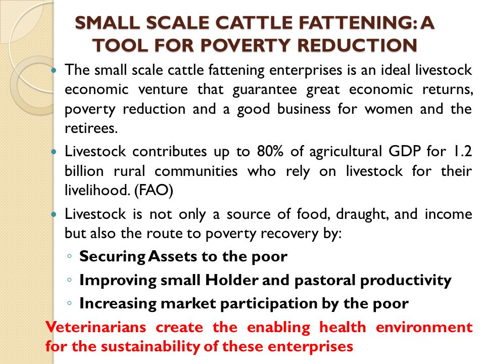 SMALL SCALE CATTLE FATTENING: A TOOL FOR POVERTY REDUCTION The small scale cattle fattening enterprises is an ideal livestock economic venture that gu