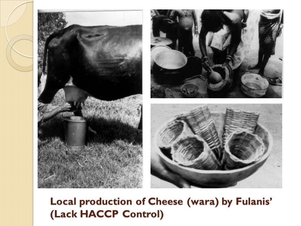Local production of Cheese (wara) by Fulanis' (Lack HACCP Control)