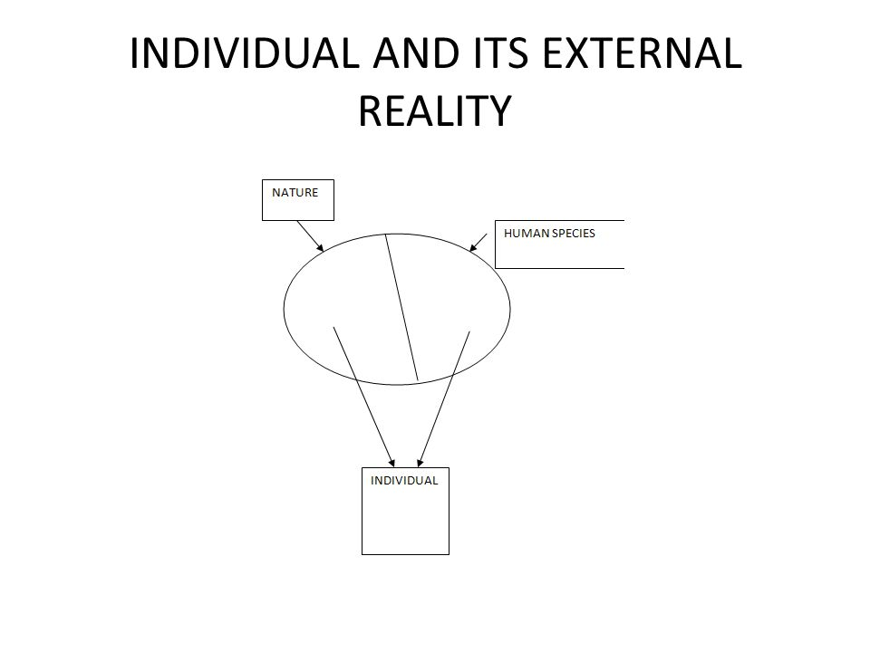 INDIVIDUAL AND ITS EXTERNAL REALITY