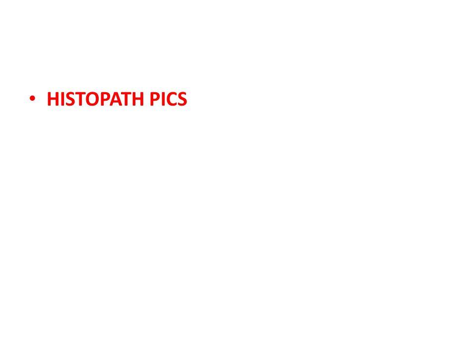 HISTOPATH PICS