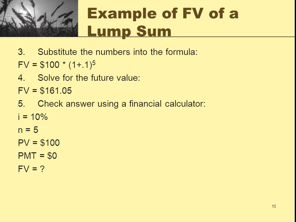 15 Example of FV of a Lump Sum 3.Substitute the numbers into the formula: FV = $100 * (1+.1) 5 4.Solve for the future value: FV = $161.05 5.Check answ