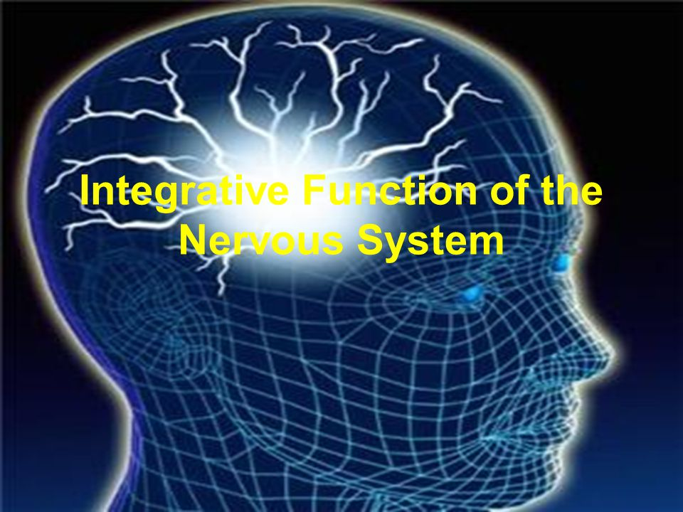Psychoactive Drugs Psychoactive drugs affect the nervous system to alter mood, emotion, and thought Psychoactive drugs act by: –Increasing or decreasing release of neurotransmitters –Stimulating or blocking receptor sites