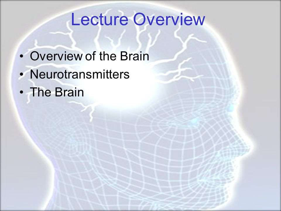 Cerebral Cortex Cortex refers to the outer covering of the brain –Consists of left and right hemispheres –Cortex is divided into lobes Frontal: Self-awareness, planning, voluntary movement, emotional control, speech, working memory Parietal: Body sensations Occipital: Vision Temporal: Hearing, language comprehension