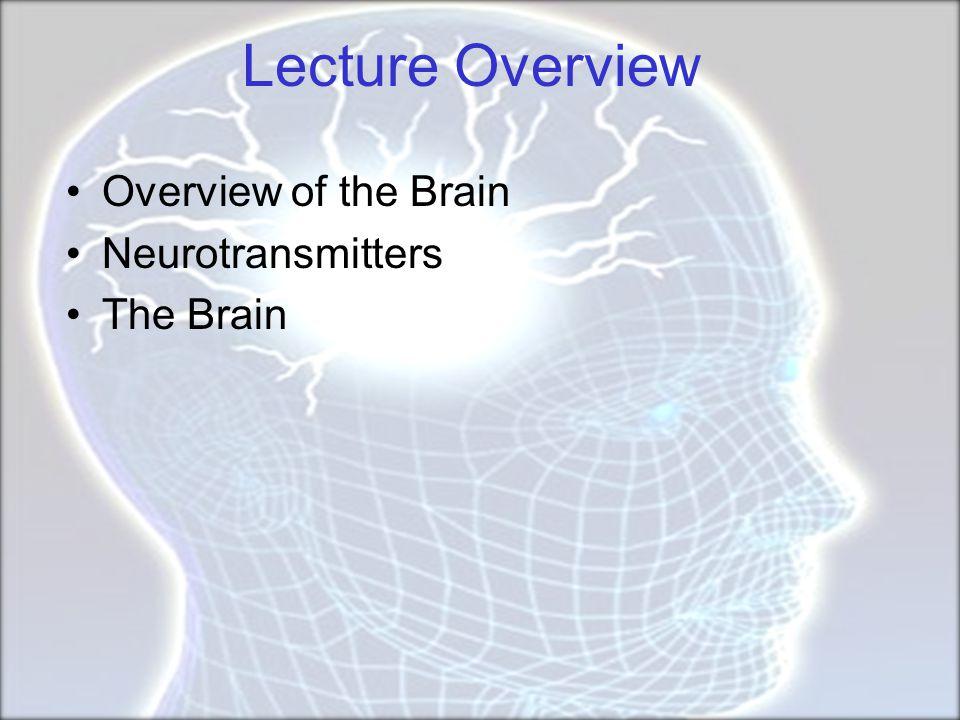 Psychoactive Drugs Agonists enhance neurotransmitter function Antagonists block neurotransmitter function