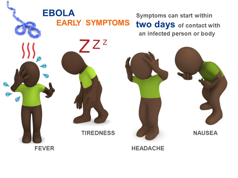 EBOLA EARLY Symptoms can start within two days of contact with SYMPTOMS an infected personororbody TIREDNESSNAUSEA FEVERHEADACHE 6