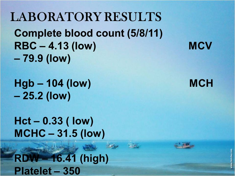LABORATORY RESULTS Complete blood count (5/8/11) RBC – 4.13 (low) MCV – 79.9 (low) Hgb – 104 (low) MCH – 25.2 (low) Hct – 0.33 ( low) MCHC – 31.5 (low