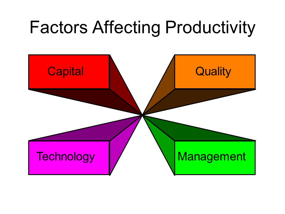 Factors Affecting Productivity CapitalQuality TechnologyManagement