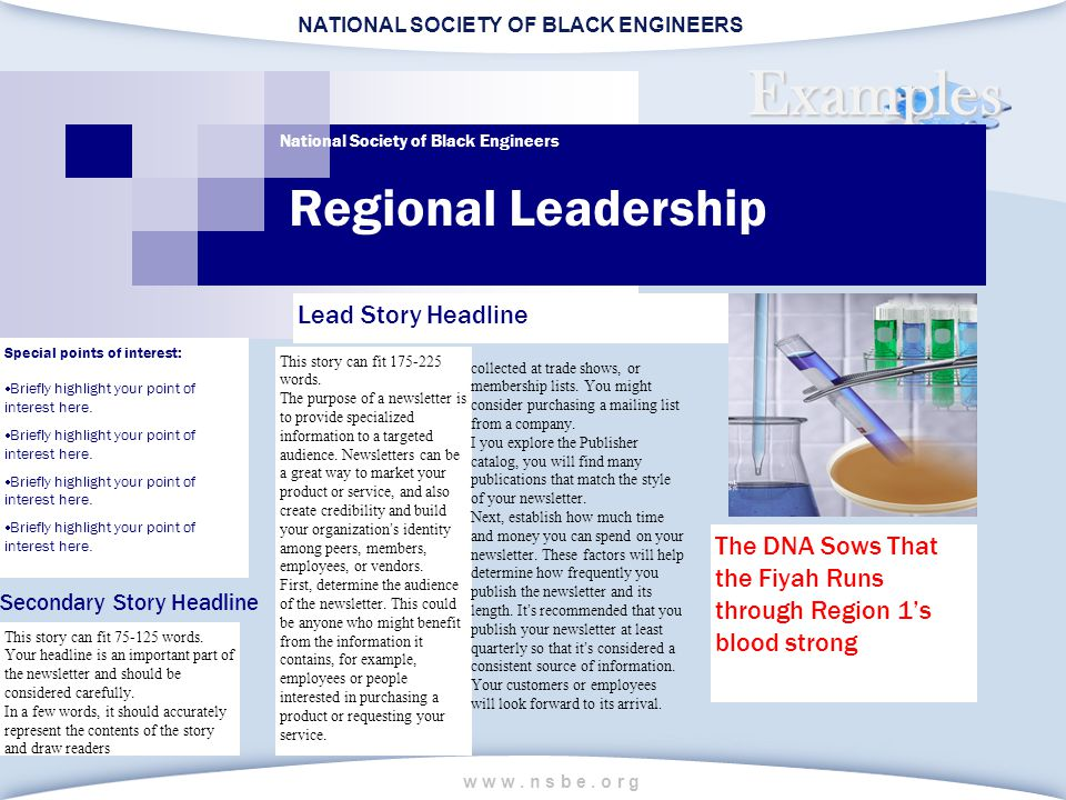 NATIONAL SOCIETY OF BLACK ENGINEERS w w w. n s b e. o r g Examples Regional Leadership National Society of Black Engineers Lead Story Headline This st