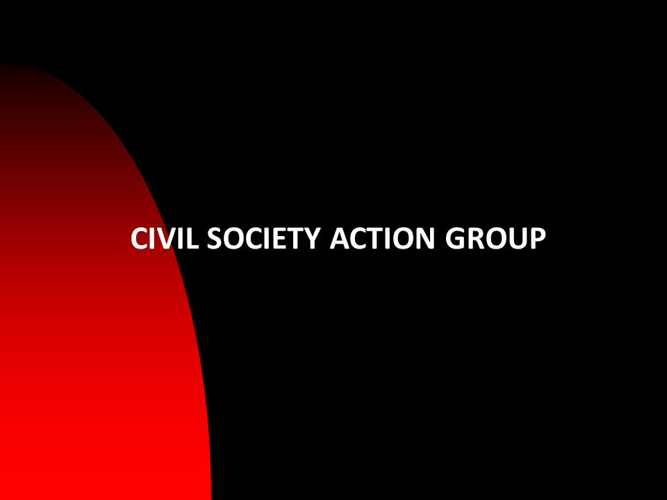 CIVIL SOCIETY ACTION GROUP