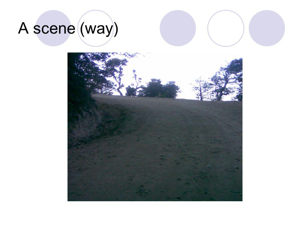 A scene (way)