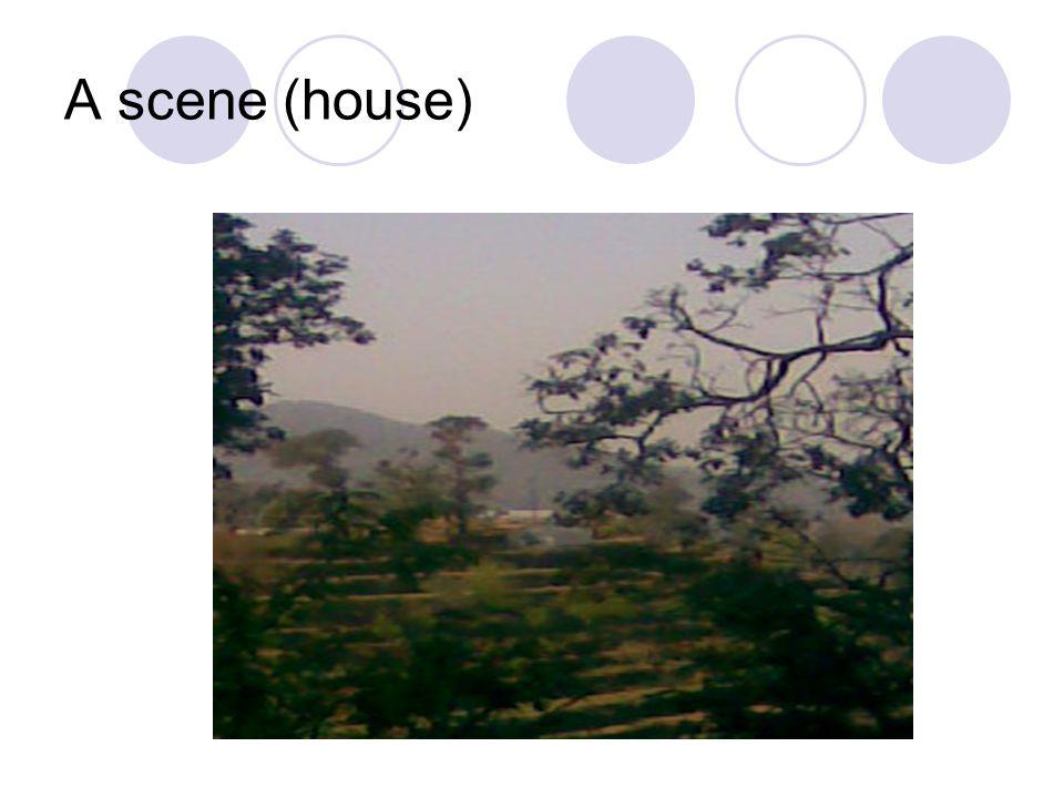 A scene (house)
