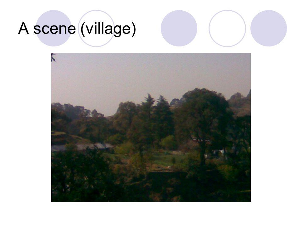 A scene (village)