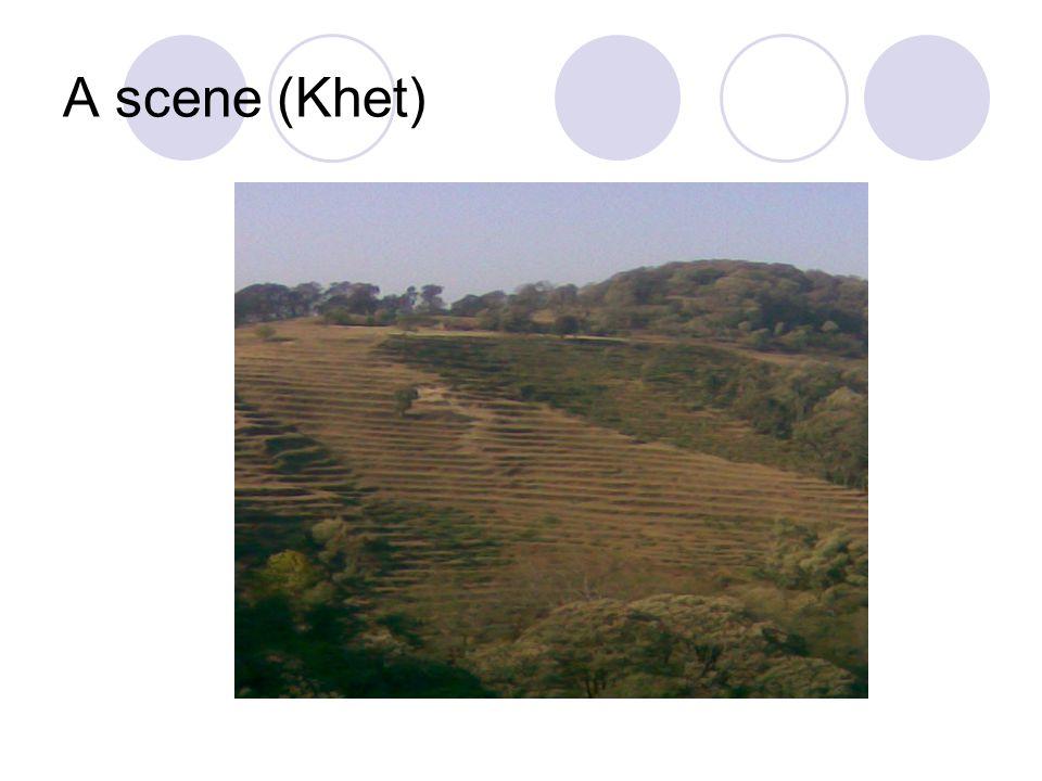 A scene (Khet)