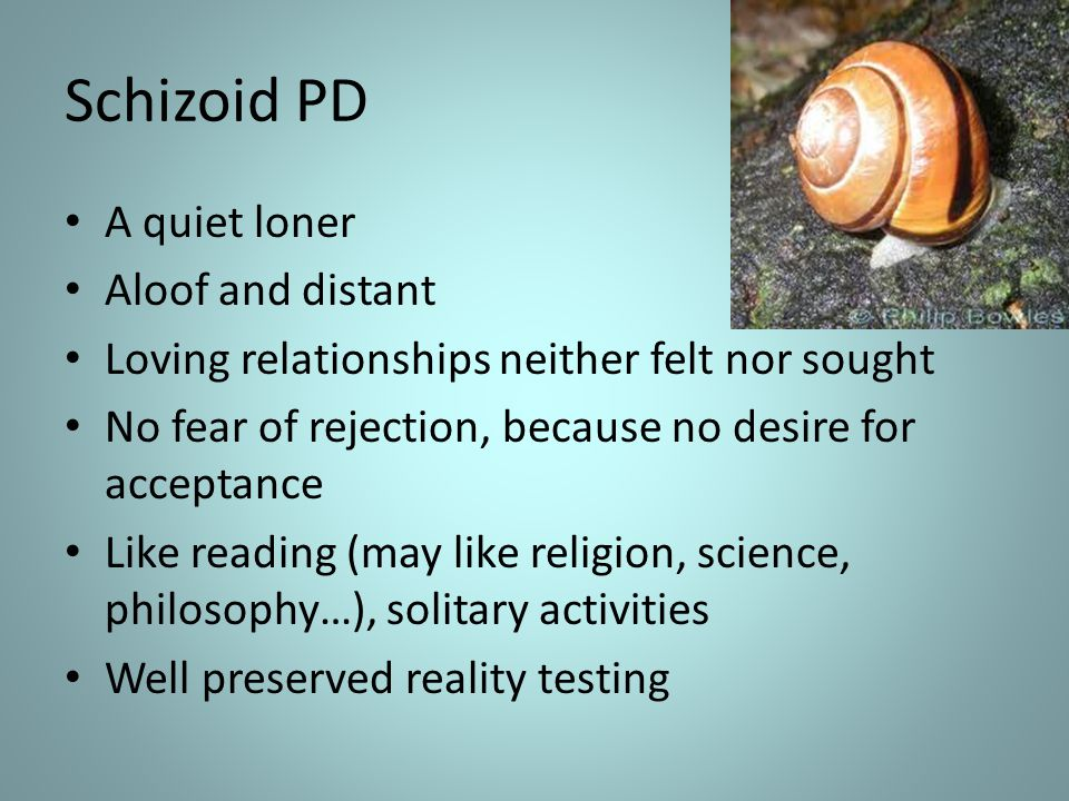 Schizoid PD A quiet loner Aloof and distant Loving relationships neither felt nor sought No fear of rejection, because no desire for acceptance Like r