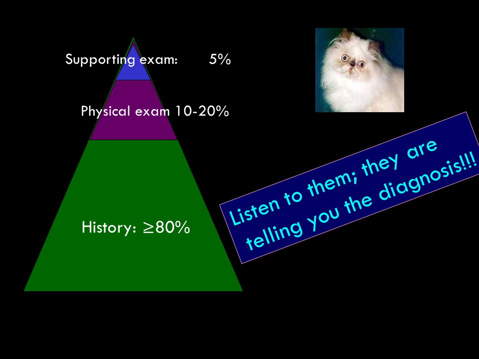 Listen to them; they are telling you the diagnosis!!! History: ≥80% Supporting exam:5% Physical exam 10-20%