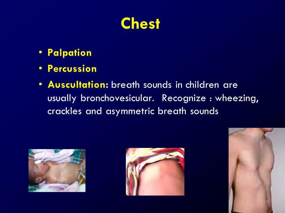 Chest Palpation Percussion Auscultation: breath sounds in children are usually bronchovesicular. Recognize : wheezing, crackles and asymmetric breath