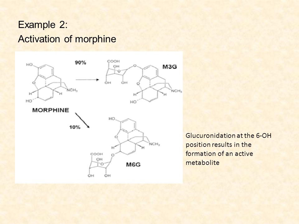 Example 2: Activation of morphine Glucuronidation at the 6-OH position results in the formation of an active metabolite