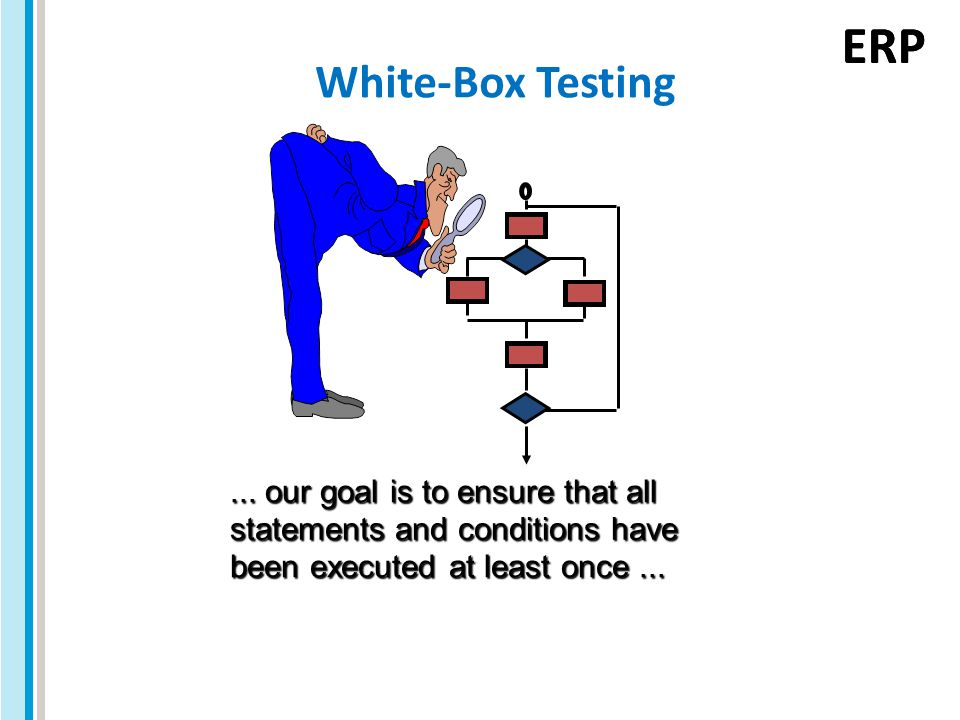 ERP White-Box Testing...