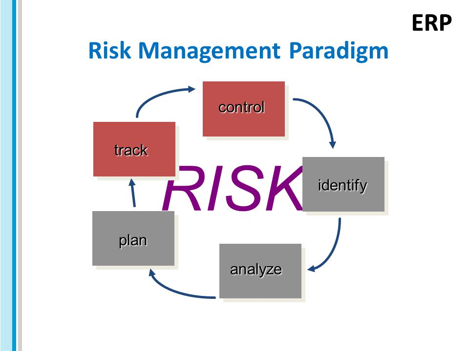 ERP RISK Risk Management Paradigm control identify analyze plan track