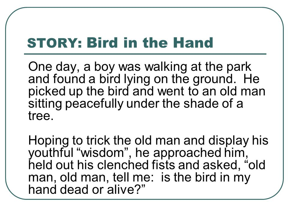 STORY: Bird in the Hand One day, a boy was walking at the park and found a bird lying on the ground. He picked up the bird and went to an old man sitt