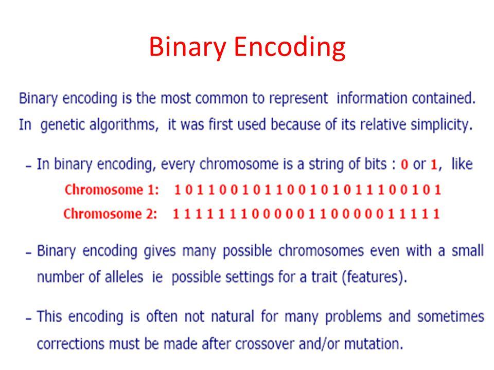 Binary Encoding 23