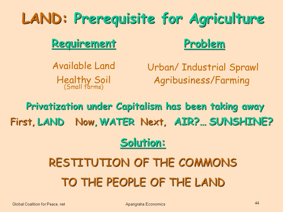 Global Coalition for Peace. netAparigraha Economics 44 LAND: Prerequisite for Agriculture Requirement Available Land Healthy Soil (Small farms) Proble