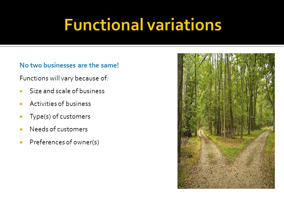 No two businesses are the same! Functions will vary because of:  Size and scale of business  Activities of business  Type(s) of customers  Needs o