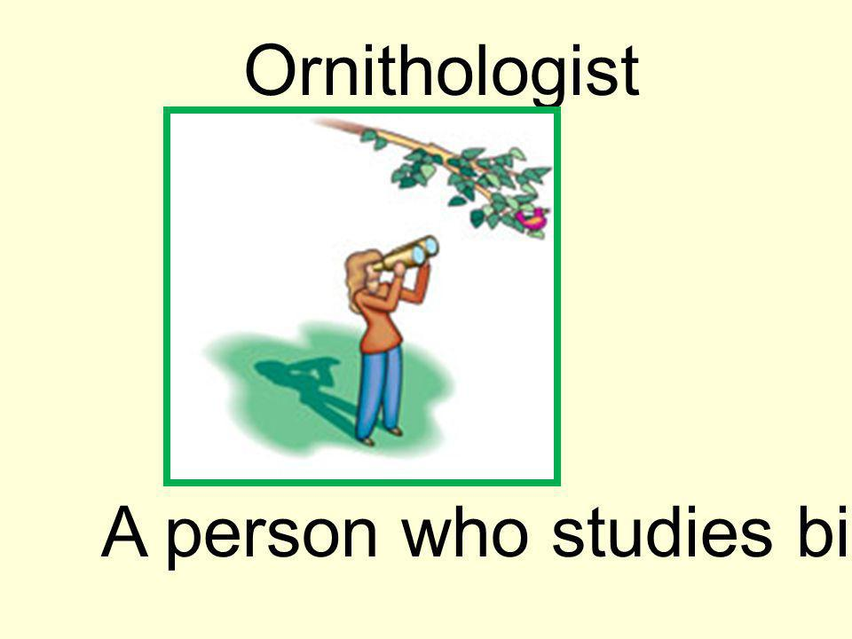 Ornithologist A person who studies birds.