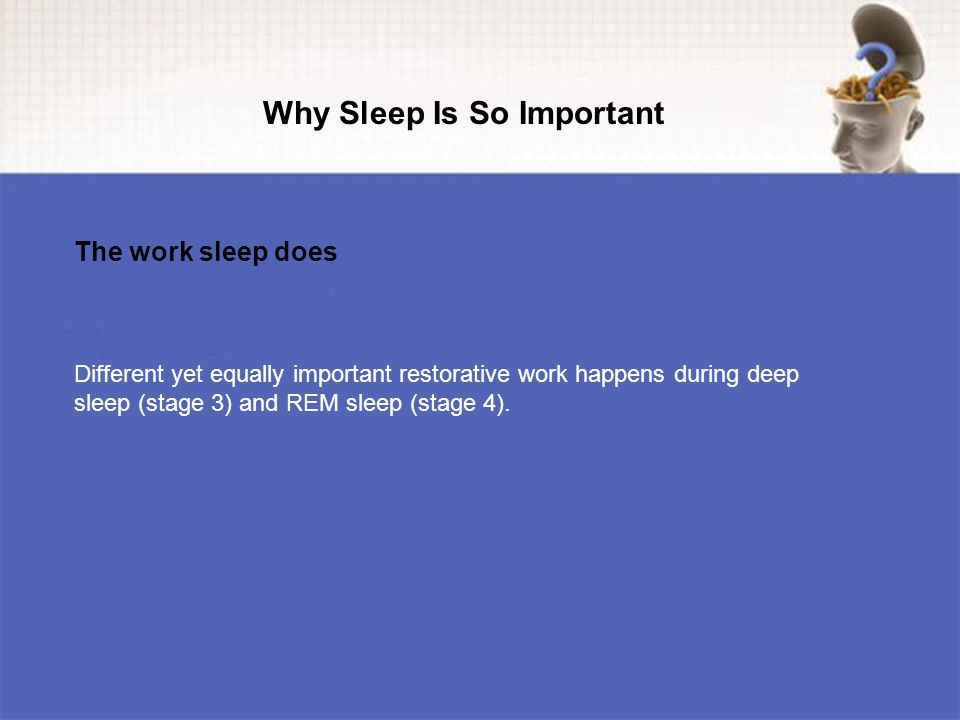 Different yet equally important restorative work happens during deep sleep (stage 3) and REM sleep (stage 4).