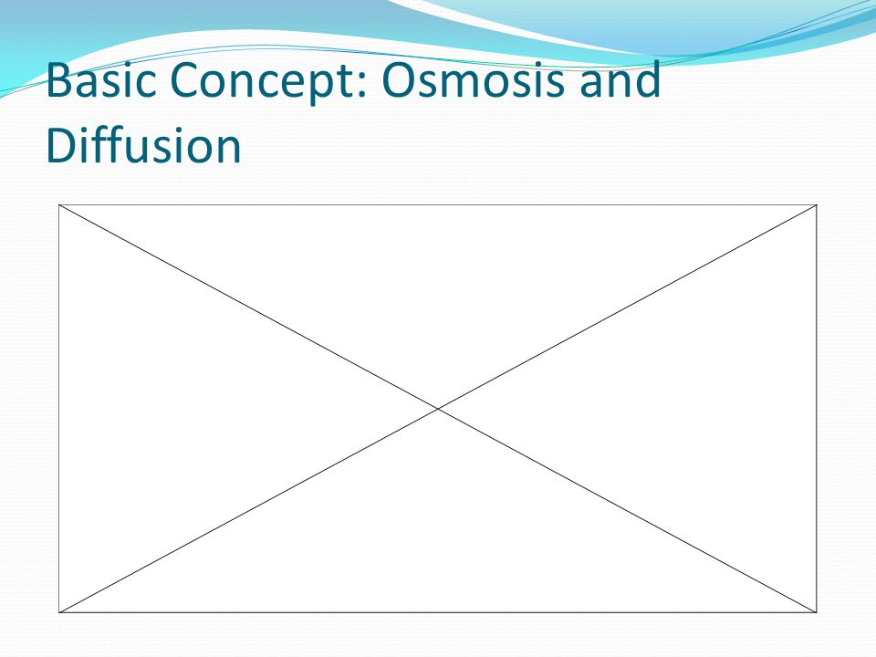 Basic Concept: Osmosis and Diffusion